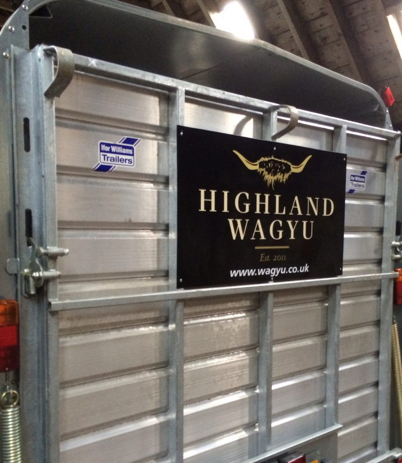 Highland Wagyu cattle trailer