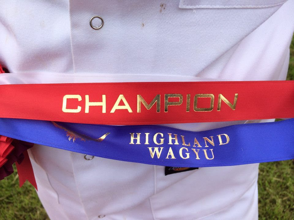 Highland Wagyu Shorthorn Champion
